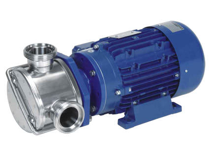 Flexible Vane Pump