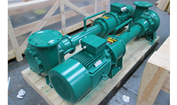 Seawater Containing Fish Waste at Fishery - Immersion Pump & Vortex Impeller
