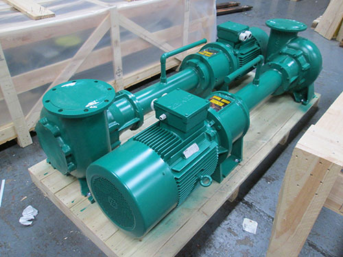 Vertical Immersion Pump for Fish Waste