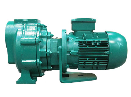 Azcue CA Close Coupled Self Priming Centrifugal Pump