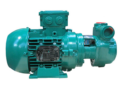 Azcue MA Close Coupled Side Channel Pump