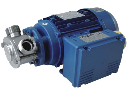 Liverani FEP Flexible Impeller Pump