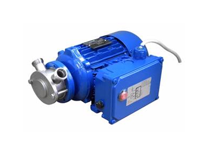 Liverani Miniverter Flexible Impeller Pump
