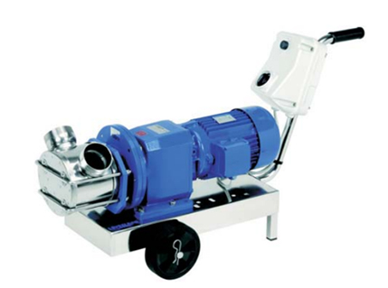 Liverani RID Flexible Impeller Pump