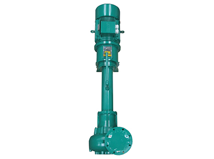 Vertical Immersion Pumps