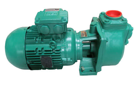 Azcue CA Self Priming Centrifugal Pump