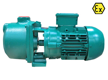 Azcue CA ATEX Close Coupled Self Priming Centrifugal Pump